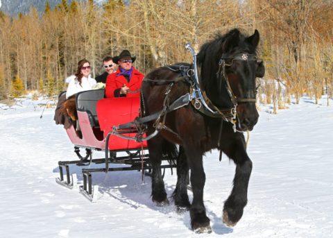 Banff sleigh-ride-for-2