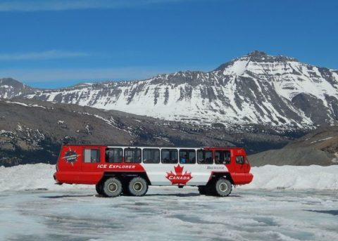 Icefield Parkway Tour